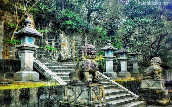 Travel Life Taipei Maple Romanticism Photography Yalan雅岚 黑摄会