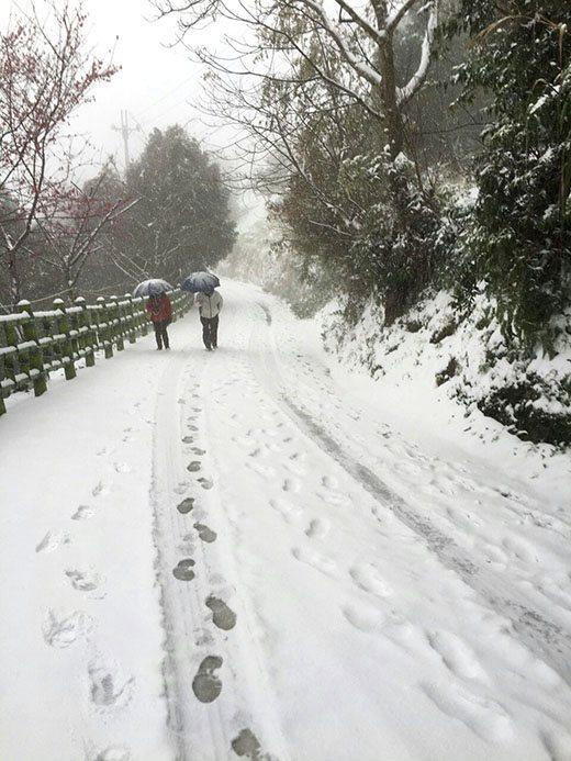 Life Taiwan Snowland Romanticism 台北生活  新竹五峰 雪景 浪漫主义 Yalan雅岚 黑摄会